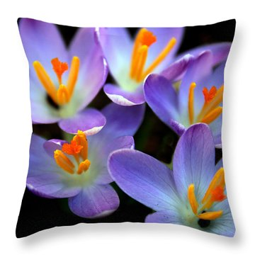 Throw Pillow featuring the photograph Crocus Aglow by Jessica Jenney