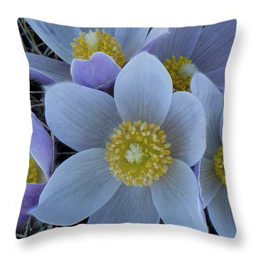 Crocus Blossoms Throw Pillow