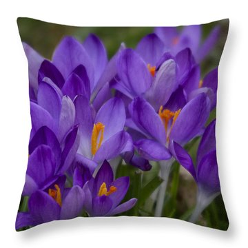 Crocus Cluster Throw Pillow