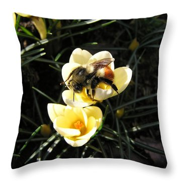 Crocus Gold Throw Pillow