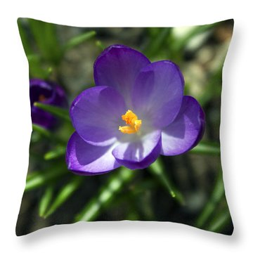 Throw Pillow featuring the photograph Crocus In Bloom #1 by Jeff Severson
