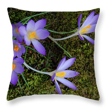 Throw Pillow featuring the photograph Crocus Outreach by Roger Bester