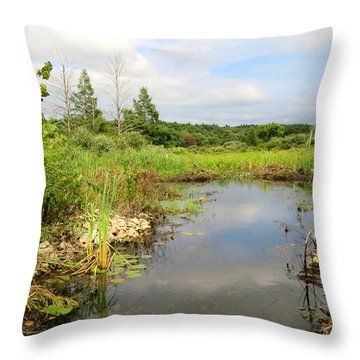 Crooked Creek Preserve Throw Pillow by Kimberly Mackowski