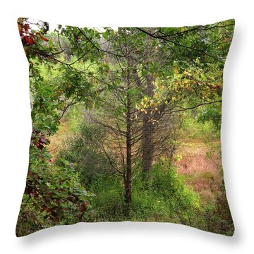 Crooked Creek Woods Throw Pillow by Kimberly Mackowski