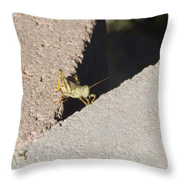 Cross Over Grasshopper Throw Pillow