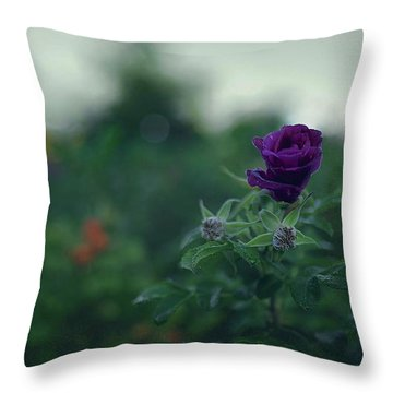 Cross-season Throw Pillow