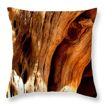 Crossing Texture  Throw Pillow by Jamie Lynn