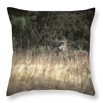 Crossing The Meadow Throw Pillow