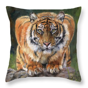 Crouching Tiger Throw Pillow by David Stribbling