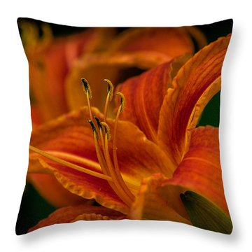 Crouching Tiger, Hidden Beauty Throw Pillow