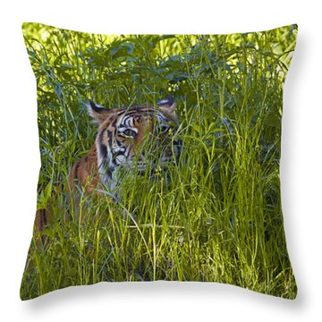 Crouching Tiger Throw Pillow