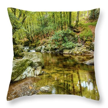 Crough Wood 1 Throw Pillow
