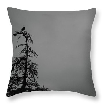 Crow Perched On Tree Top - Black And White Throw Pillow