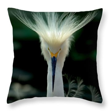 Crown Of Feathers Throw Pillow
