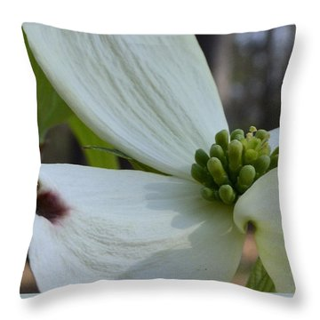Crown Of Thorns Throw Pillow by Larry Bishop