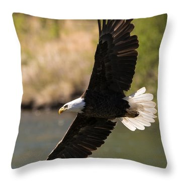 Cruising The River Throw Pillow by Mike Dawson