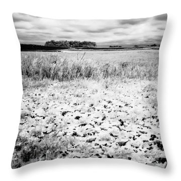 Crunchy Marsh Throw Pillow