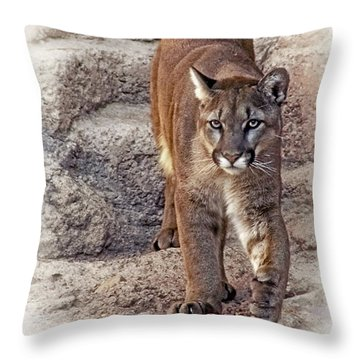 Throw Pillow featuring the photograph Cruz Cruzin' by Elaine Malott