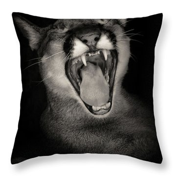 Cruz Yawning Throw Pillow