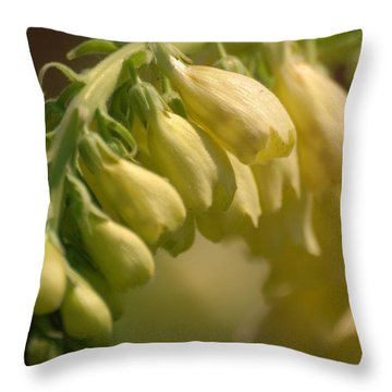 Throw Pillow featuring the photograph Crying Softly by Ramona Whiteaker