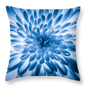 Cryptology Throw Pillow by Matti Ollikainen