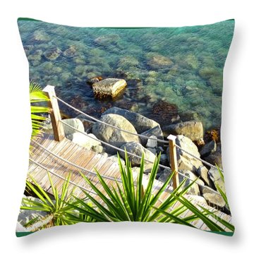 Crystal Clear Throw Pillow by Beth Saffer