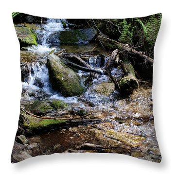 Throw Pillow featuring the photograph Crystal Clear Creek by Ben Upham III