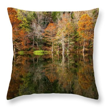 Throw Pillow featuring the photograph Crystal Clear by Iris Greenwell
