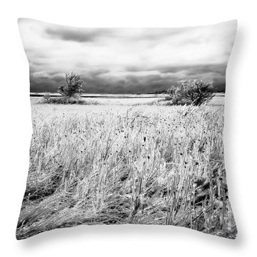 Crystal Grass Throw Pillow