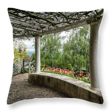 Crystal Hermitage Colonnade 5869 Throw Pillow by Janis Knight