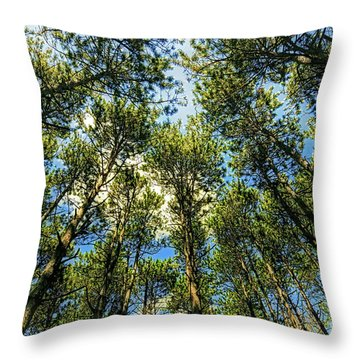Throw Pillow featuring the photograph Crystal Lake Il Pine Grove And Sky by Tom Jelen