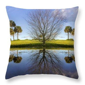 Crystal Waters Throw Pillow by Debra and Dave Vanderlaan