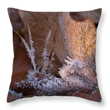 Crystaline Life Throw Pillow by Douglas Barnett