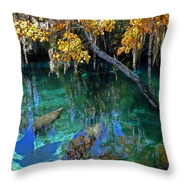 Crystalline Spring Throw Pillow by Judy Wanamaker