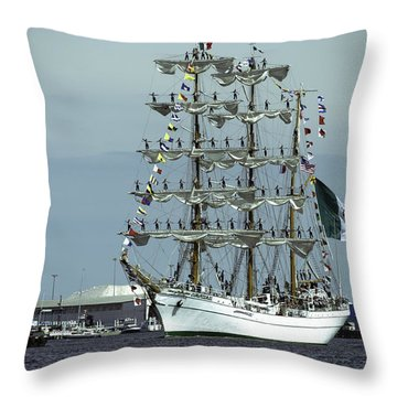 Cuauhtemoc And Mark Moran Throw Pillow by Steven Richman