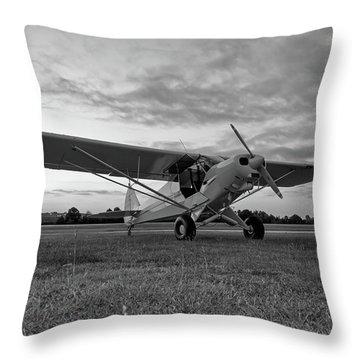 Cub At Daybreak Throw Pillow