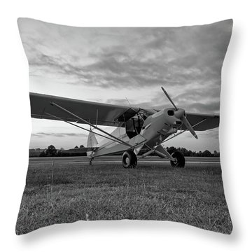 Cub At Daybreak Throw Pillow