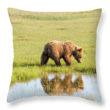 Cub Reflection Throw Pillow