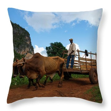 Cuban Worker II Throw Pillow