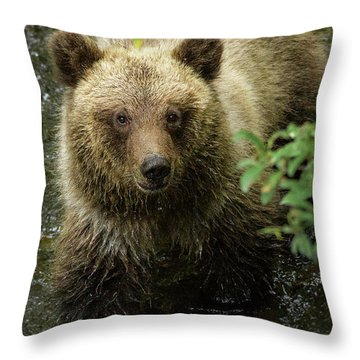 Cubby Throw Pillow