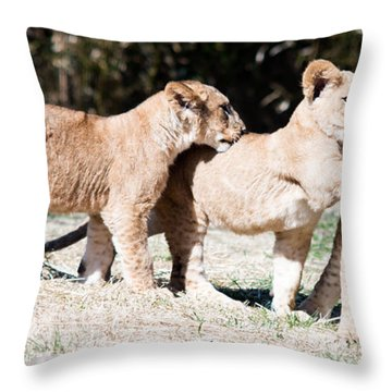 Throw Pillow featuring the photograph Cubs At Play by Cathy Donohoue