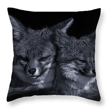 Cuddle Buddies  Throw Pillow by Brian Cross