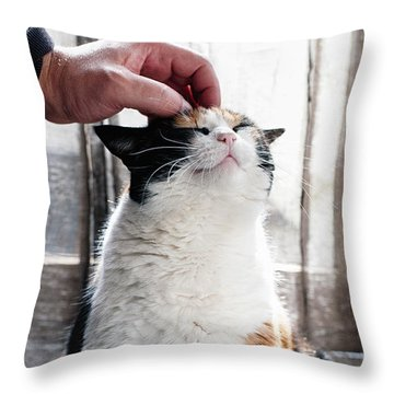 Throw Pillow featuring the photograph Cuddles by Laura Melis