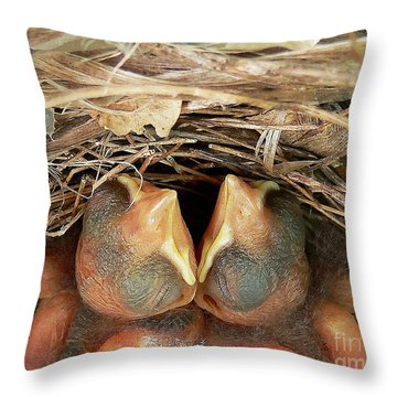 Cuddling Cardinals Throw Pillow by Al Powell Photography USA
