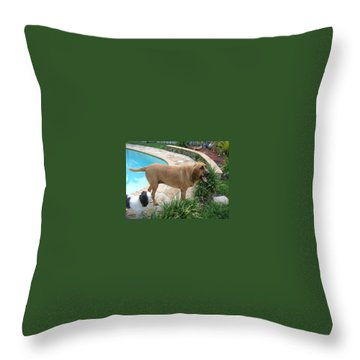 Cujo And Lucky By The Pool Throw Pillow by Val Oconnor