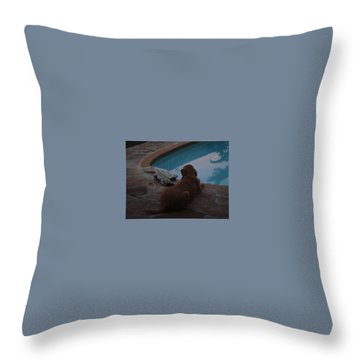 Cujo And The Alligator Throw Pillow by Val Oconnor