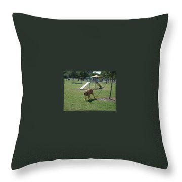Cujo Running At The Park Throw Pillow by Val Oconnor