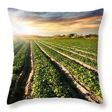 Agricultural Industry Throw Pillows