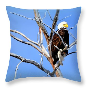 Cultural Freedom Throw Pillow