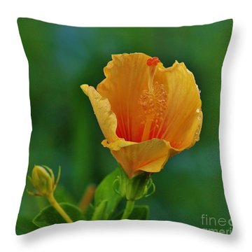 Cup Of Honey Throw Pillow